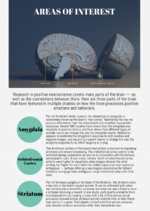 Graphic highlighting the regions of the brain associated with important emotional and psychological states, according to positive neuroscience research.