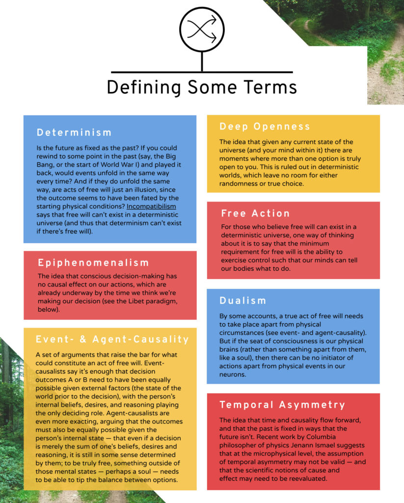 An infographic showing definitions of free will and terms in the neuroscience of free will.